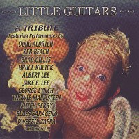 VAN HALEN TRIBUTE Little Guitars