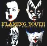 FLAMING YOUTH - A Norwegian Tribute To Kiss